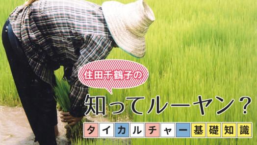 タイカルチャー基礎知識:タイの農業