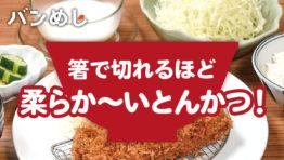 箸で切れる柔らか~いとんかつは一人飯の強い味方