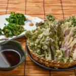 揚げたてがたまらない山菜の天ぷら(Sサイズ330B~)、山菜のおひたし(390B)も沁み入る旨さ