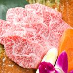 ガツンと食べ応えあるトロカルビ(350B)はコスパ最強。酒もご飯もススムこと請け合い